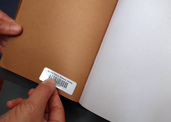 A barcode sticker being stuck to the inside cover of Simon Phillipson 'Oring of Species' book