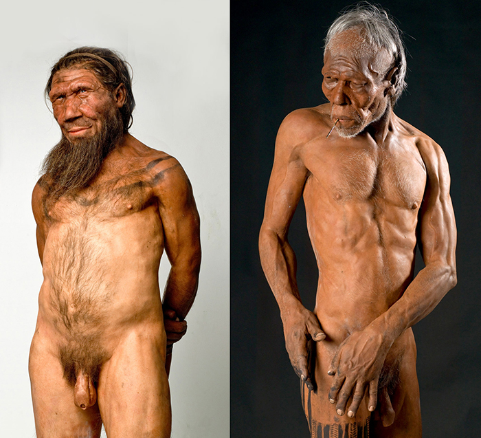 Lifesize models of Ned the Neanderthal and Quentin the Homo sapiens