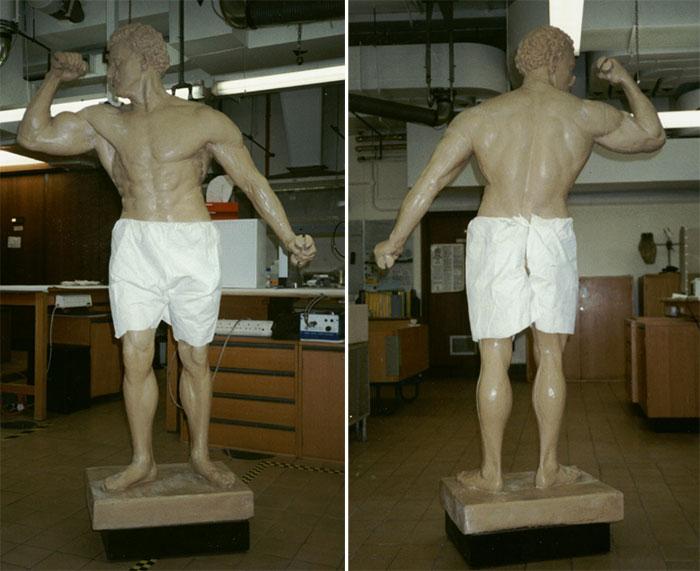 Front and back view of Schwarzenegger's Sandow replica