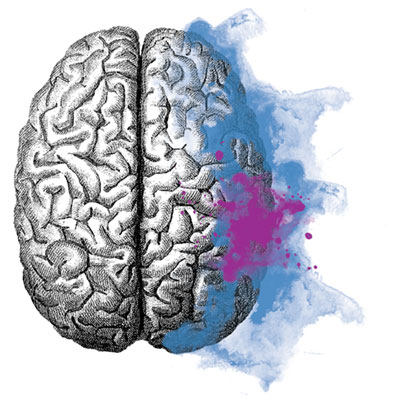 A sketch of a brain with watercolour marking brain activity
