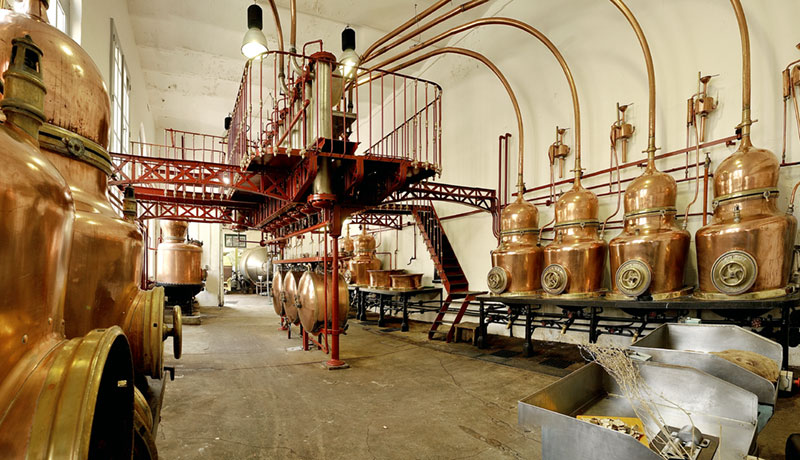 Copper stills in an absinthe distillery